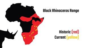 W-BlackRhinoRange